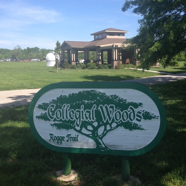 Collegial Woods