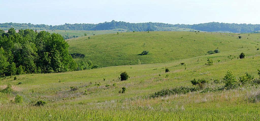 Powelson Wildlife Area